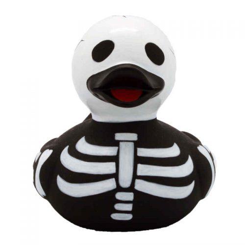 Skelett Ente